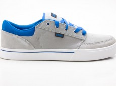 Etnies Nathan William Brake Herren Sneaker grau
